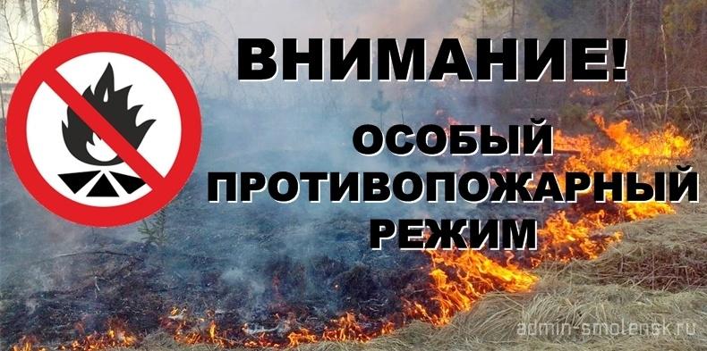 большой кем устанавливается противопожарный режим члены